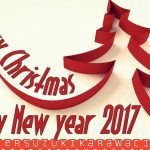 Marry Xmas & Happy New Year 2017